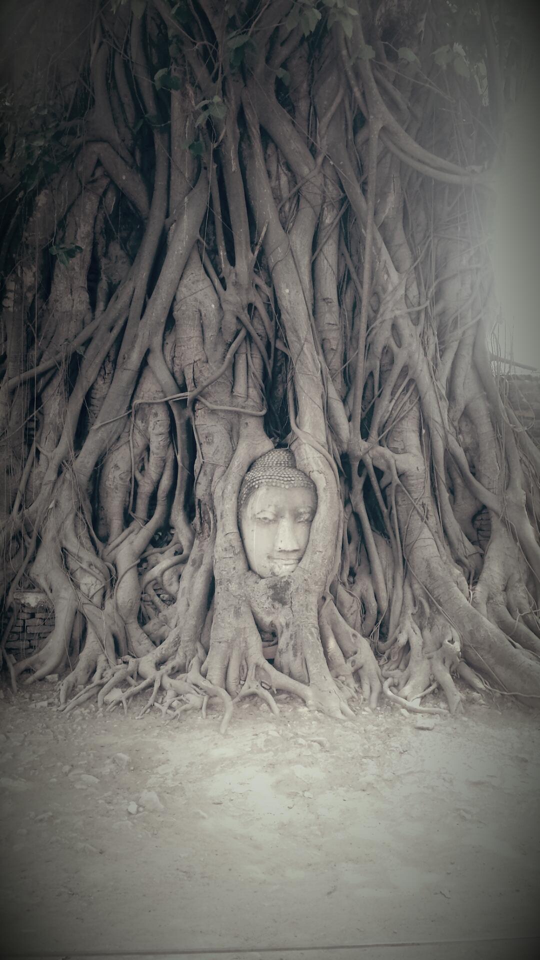 Eine Nacht in Ayutthaya….