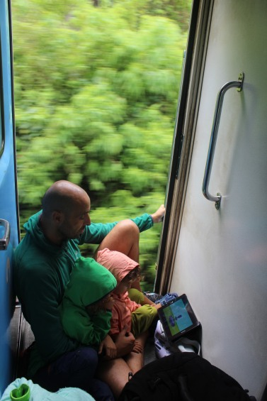 Zug fahren an der offenen Tür