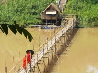 Bamboo Bridge