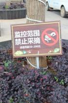 diese Schilder gibt es oft in China <3